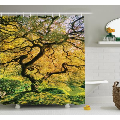 Riddle Japanese Shadows of a Large Maple With River With Sunlight Fall Season Nature Theme Shower Curtain Size: 69
