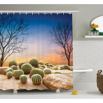 Austinville Cactus Balls With Spikes on a Montain Desert Sand Mexican Landscape Photo Shower Curtain Size: 69 W x 70 H