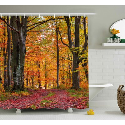 Xanthe Autumn Fall Forest With Shady Deciduous Trees and Faded Leaf Magic Woodland Picture Shower Curtain Size: 69 W x 70 H