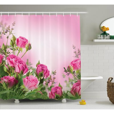 Fuller Spring Time Roses With Leaves and Buds With Pink Ombre Atmosphere Image Shower Curtain Size: 69 W x 70 H