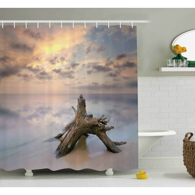 Cara Sunrise on The Water and Driftwood on The Sandy Beach Digital Image Shower Curtain Size: 69 W x 70 H