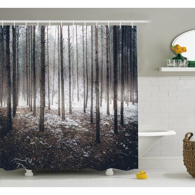 Mccarthy Scene of Dark Spooky Misty Forest Veiled With Fog Mystic Birches Print Shower Curtain Size: 69 W x 70 H