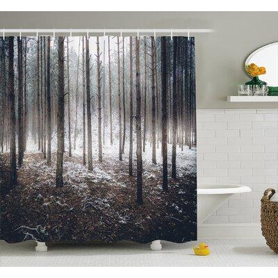 Mccarthy Scene of Dark Spooky Misty Forest Veiled With Fog Mystic Birches Print Shower Curtain Size: 69 W x 70 H