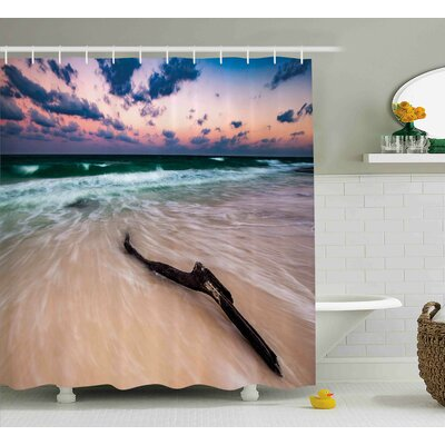 Jeannine Seascape Theme Driftwood on Deserted Beach At Sunset Digital Image Shower Curtain Size: 69 W x 70 H