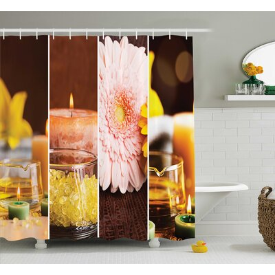 Apartment Aromatic Gerbera and Candles Exotic Asian Body Therapy Treatment Decor Shower Curtain Size: 69 W x 70 H