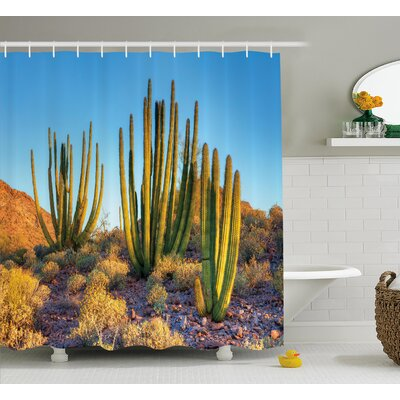 Avondale Photo of Nature Desert Cactus With Spikes and Mountains Open Clear Sky Image Shower Curtain Size: 69 W x 70 H