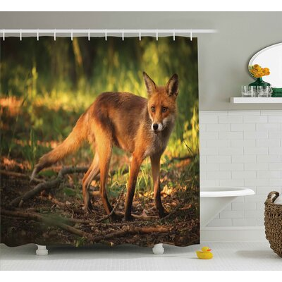 Ike Wild Cute Fox Shower Curtain Size: 69 W x 75 L