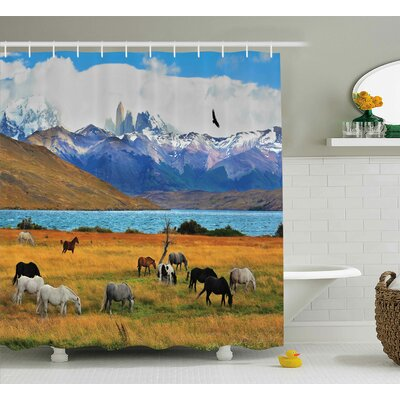 Banjo Farm Horse Shower Curtain Size: 69 W x 70 L