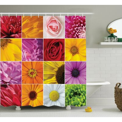 Aleah Colorful Flowers Rose Shower Curtain Size: 69 W x 70 L