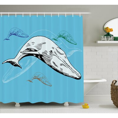 Animal Ocean Whales Hand Drawn Shower Curtain Size: 69 W x 84 L