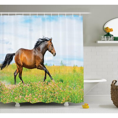 Hamilton Horse Rural Flowers Shower Curtain Size: 69 W x 75 L