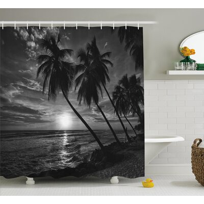 Tropical Coconut Palm Trees Print Shower Curtain Size: 69 W x 75 L