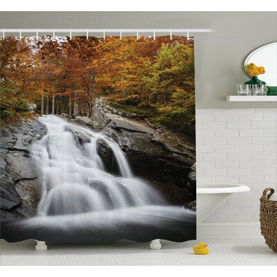 Landscape Fall Trees with Lake Shower Curtain Size: 69 W x 75 L