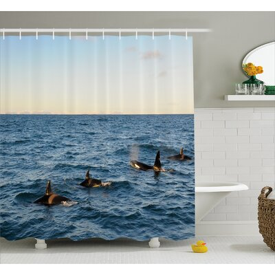 Photo Whales in Sea Ocean Shower Curtain Size: 69 W x 70 L