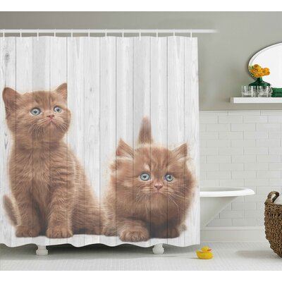 Animal Cute Kitten Kids Decor Shower Curtain Size: 69 W x 75 L