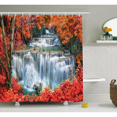 Landscape Botanic Fall Forest Shower Curtain Size: 69 W x 84 L