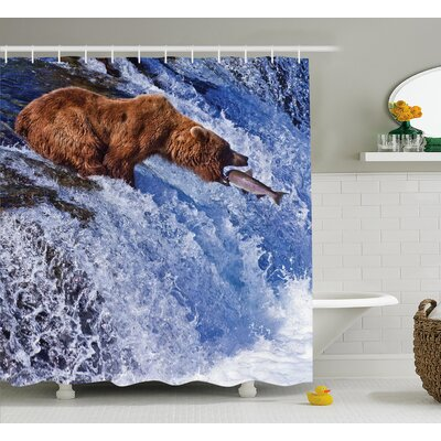 Nature Grizzly Bear at Katmai Print Shower Curtain Size: 69 W x 70 L