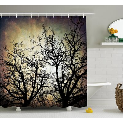 Horror Grunge Branches Twilight Shower Curtain Size: 69 W x 75 L