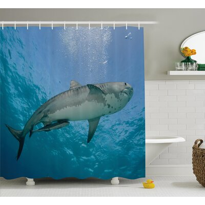 Nautical Bahamas Ocean Tropical Shower Curtain Size: 69 W x 75 L