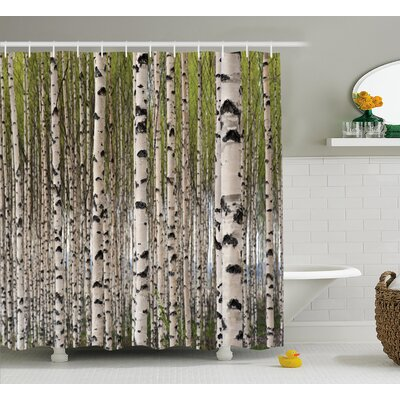 Tree Birch Trees with Leaves Shower Curtain Size: 69 W x 84 L