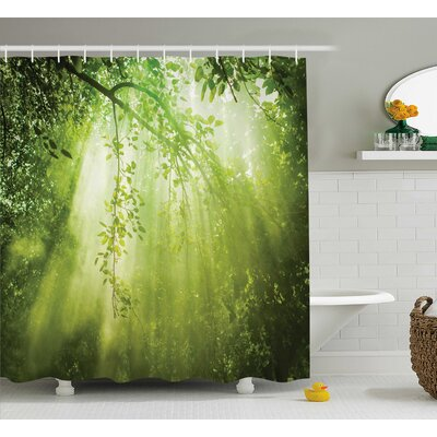 Faye Shine Sunbeams Woodland Shower Curtain Size: 69 W x 84 L