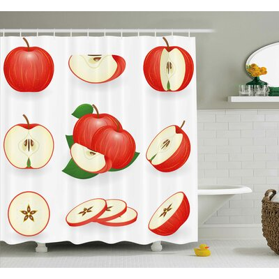 Burmont Juicy Fresh Fruits Nature Shower Curtain Size: 69