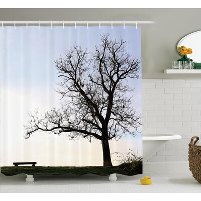 Clovis Bench and Tree Under Sky Decor Shower Curtain Size: 69 H x 75 W