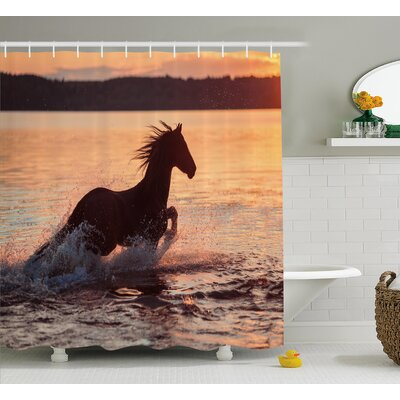 Horse Sea Shower Curtain Size: 69 H x 70 W