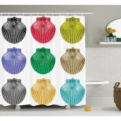 Seashells Species Shower Curtain Size: 69 H x 84 W