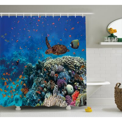 Fish and Turtle Decor Shower Curtain Size: 69 H x 75 W