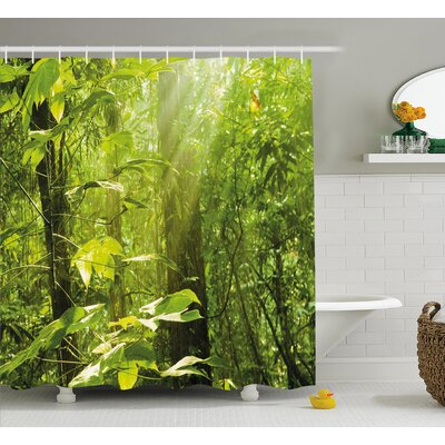 Forest with Sunray Shower Curtain Size: 69 H x 70 W