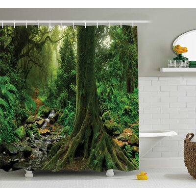 Rain Forest Decor Shower Curtain Size: 69 H x 84 W