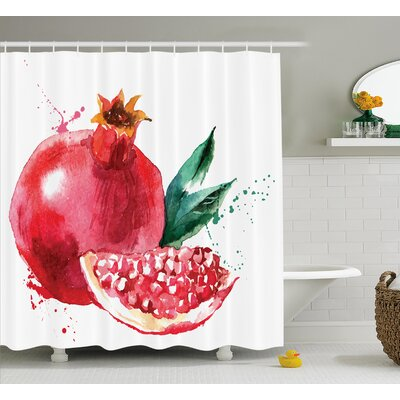 Pomegranate Shower Curtain Size: 69 H x 84 W