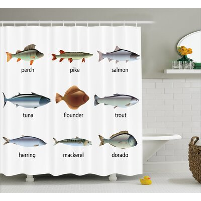 Group of Fish Decor Shower Curtain Size: 69 H x 84 W