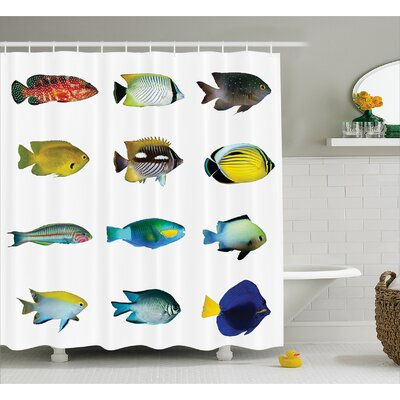 Egyptian Fish Decor Shower Curtain Size: 69 H x 70 W