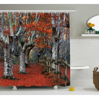 Beech Forest Decor Shower Curtain Size: 69 H x 70 W