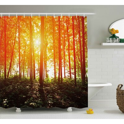 Sunrays Reflecting Shower Curtain Size: 69 H x 84 W