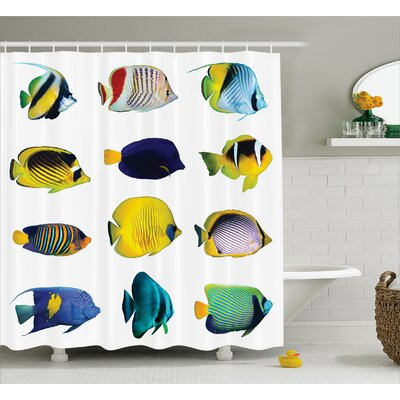 Tropical Fish Decor Shower Curtain Size: 69 H x 70 W