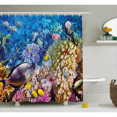 Sea Bottom  Decor Shower Curtain Size: 69 H x 84 W