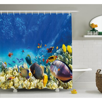 Aquatic Decor Shower Curtain Size: 69 H x 70 W