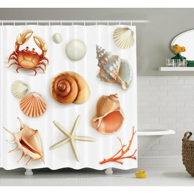 Seashells Pearls and Crabs Shower Curtain Size: 69 H x 75 W
