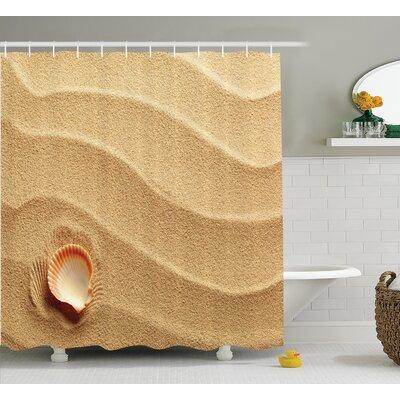 Little Seashell Shower Curtain Size: 69 H x 84 W