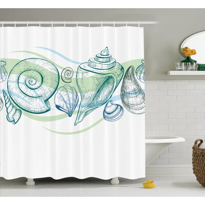 Cafferkey Seashells Shower Curtain Size: 69 H x 75 W