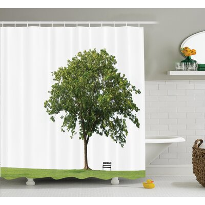 Clovis Bench Under Majestic Tree Decor Shower Curtain Size: 69 H x 75 W