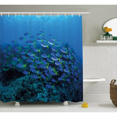 Shoal of Fish Decor Shower Curtain Size: 69 H x 84 W