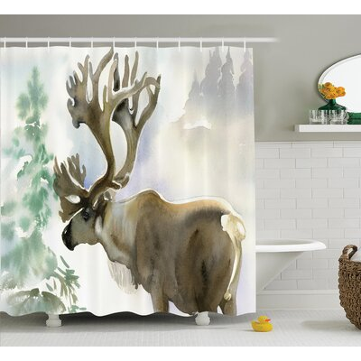 Moose Shower Curtain Size: 69 H x 75 W