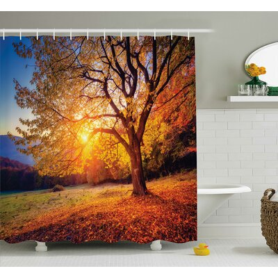 Fall Tree Decor Shower Curtain Size: 69 H x 84 W