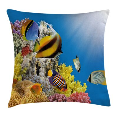 Coral Colony on Reef Top Square Pillow Cover Size: 16 x 16