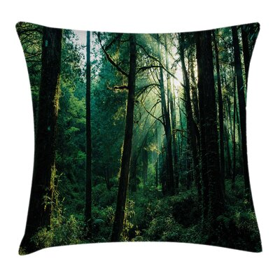 Sunset in Woods Trees Square Pillow Cover Size: 18 x 18