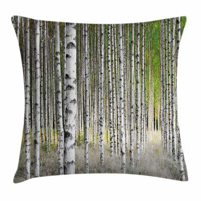 Birch Tree Late Summer Foliage Square Pillow Cover Size: 16 x 16